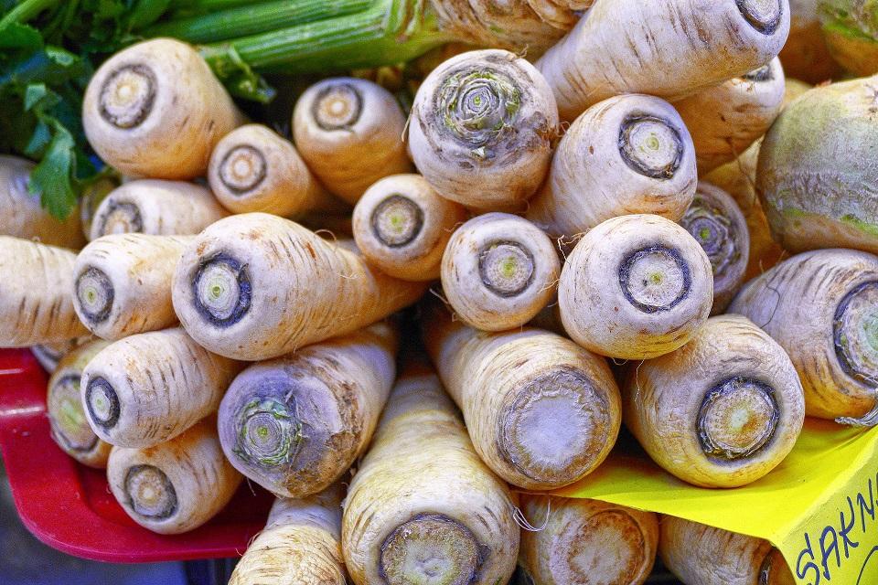 warzywakorzeniowe